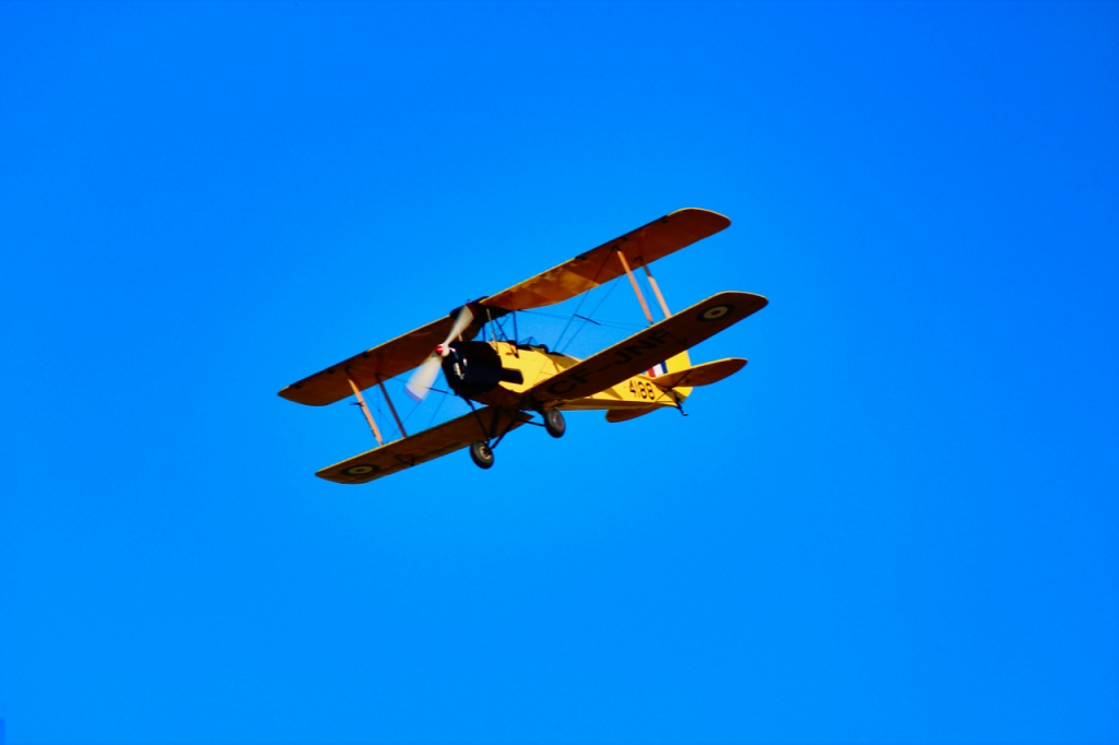 Our Tiger Moth in flight